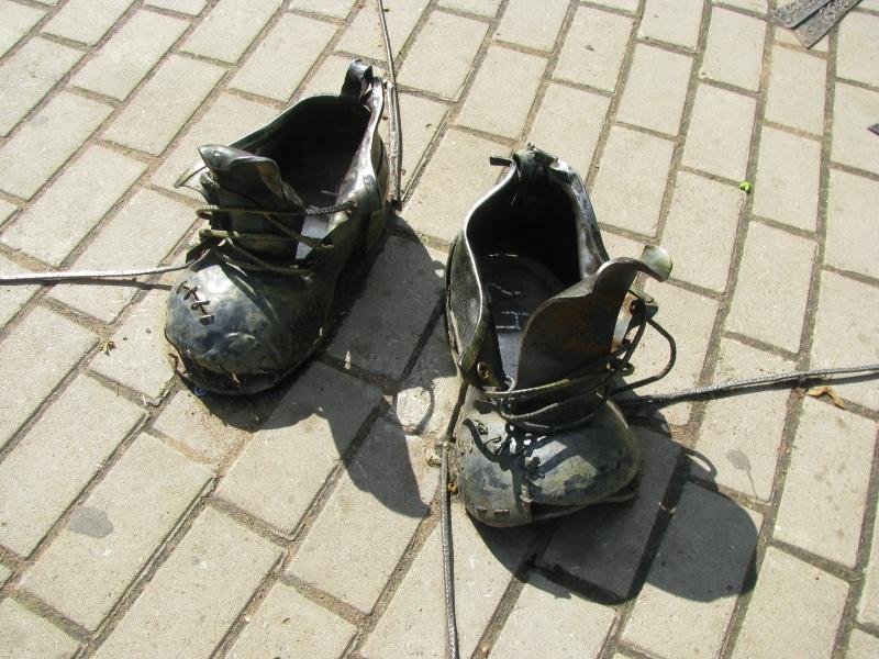 Ботинки дачника